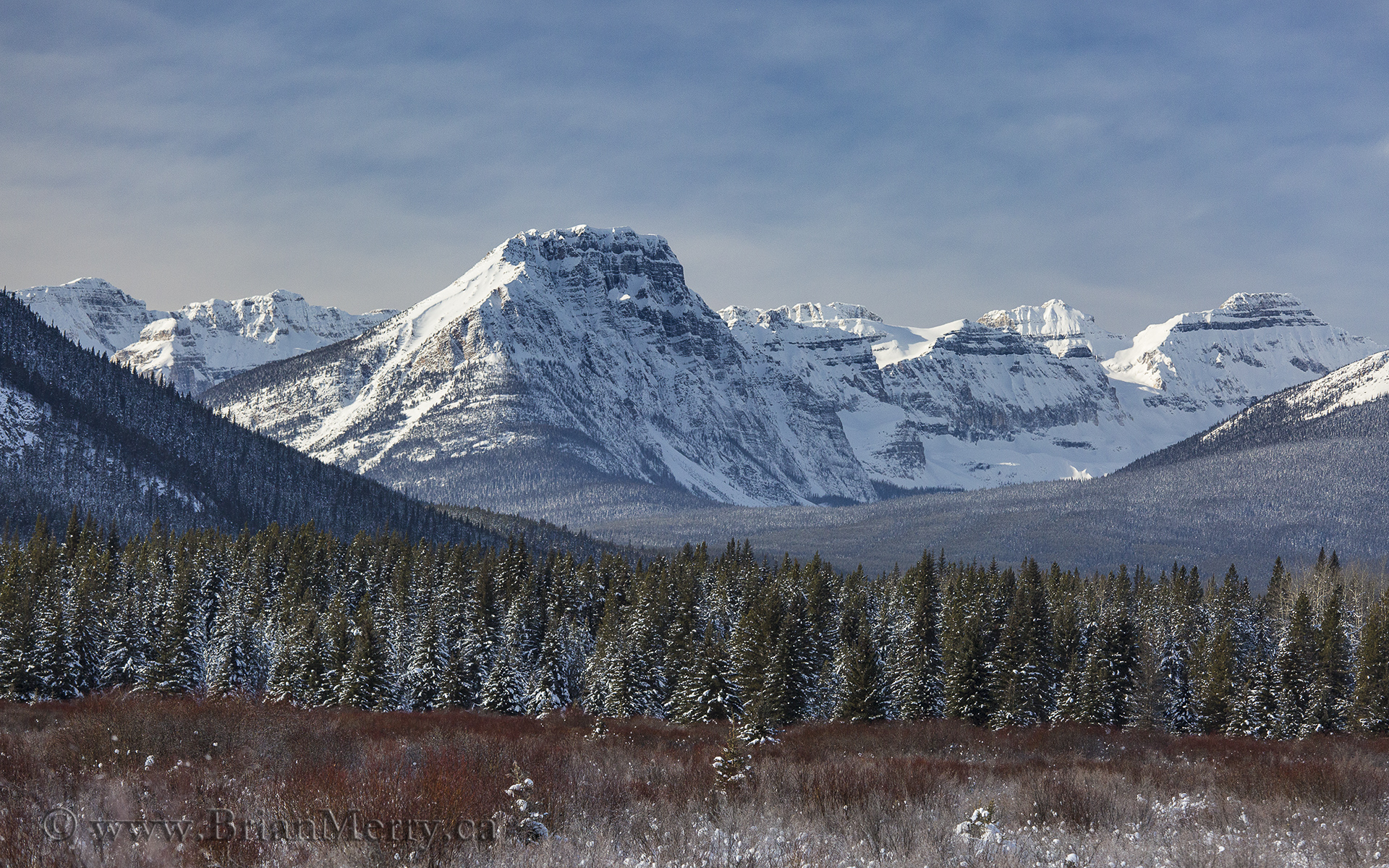Landscape Photography Moose Meadows on the Banff Bow Valley Parkway – Location Profile